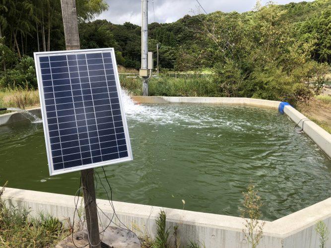 水温測定システム